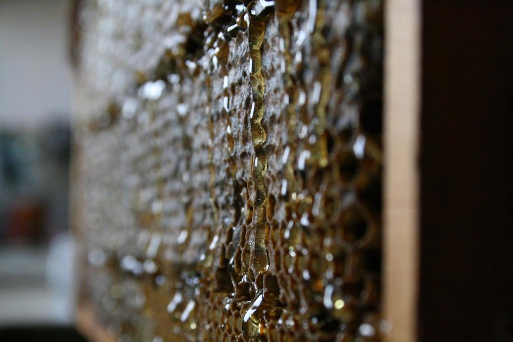 Dribbling honey