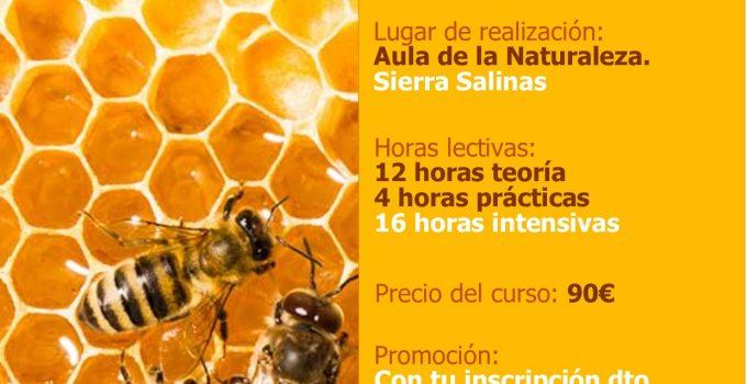 Curso de Apicultura Ecológica
